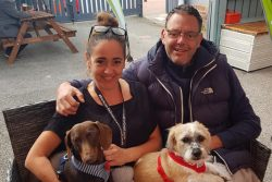 Guests and their dogs in the beer garden of The Black Lion, Buckley